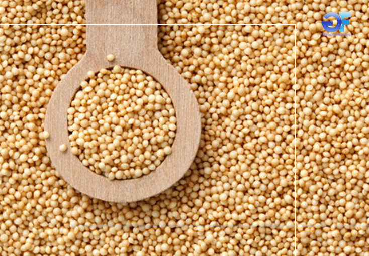 2-quinoa